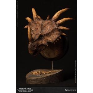 ミュージアムシリーズ スティラコサウルス バストB ブラウン[DAMTOYS]《在庫切れ》|amiami|05