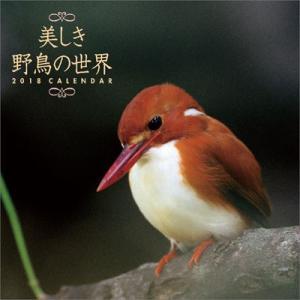 美しき野鳥の世界 2018年カレンダー[トライエックス]《取り寄せ※暫定》|amiami