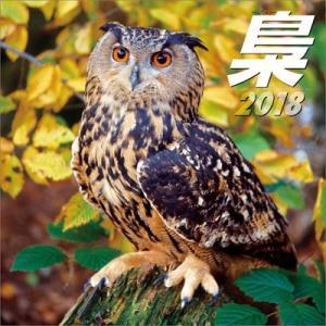 梟 〜ふくろう〜 2018年カレンダー[トライエックス]《取り寄せ※暫定》|amiami