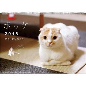 ポッケ 2018年カレンダー[トライエックス]《取り寄せ※暫定》|amiami