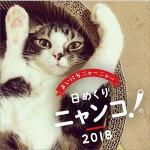 卓上 日めくりニャンコ! 2018年カレンダー[エンスカイ]《在庫切れ》|amiami