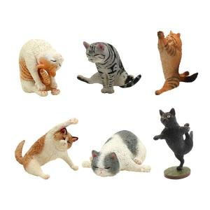 ANIMAL LIFE Yoga Cat 8個入りBOX[Yendar]《発売済・在庫品》
