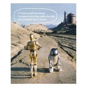 144ピース ジグソーパズル+パネルセット スター・ウォーズ R2-D2&C-3PO(W-144-639)[テンヨー]《取り寄せ※暫定》|amiami