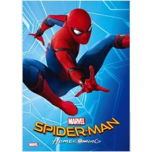 ジグソーパズル スパイダーマン:ホームカミング 108ピース(R108-616)[テンヨー]《在庫切れ》|amiami