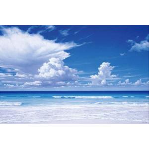 ジグソーパズル プレミアムタイムシリーズ 島倉仁 爽やかな空(THESEDAYS SOUTH) 1000ピース (10-1309)[やのまん]《03月予約※暫定》 amiami