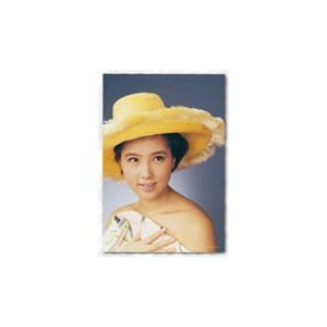 ジグソーパズル プレミアムタイム 伝説の銀幕スターシリーズ 大原麗子 108ピース (01-2066)[やのまん]《04月予約》 amiami