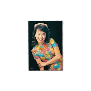 ジグソーパズル プレミアムタイム 伝説の銀幕スターシリーズ ジュディ・オング 108ピース (01-2067)[やのまん]《04月予約》 amiami
