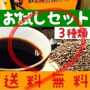 送料無料 ポイント10倍  お試し コーヒー豆 100g×3...