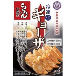 【4/8追加】桶狭間フーズ 一刻魁堂の冷凍生ギョーザ 600g(30個)|amicashop