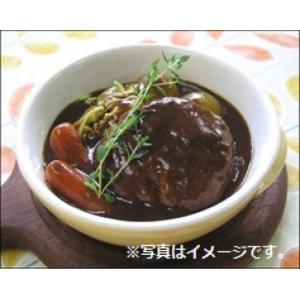 SB食品 デミグラスソースフレーク 1kg|amicashop|02