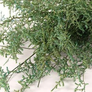 ミスティブルー ブルー 約65g入 <プリザーブドフラワー・フラワーアレンジメント・花材・花資材・ナチュラル>