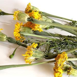 マリーゴールド Nイエロー(約30g) <プリザーブドフラワー・フラワーアレンジメント・花材・花資材・ナチュラル>