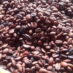 送料無料 自家焙煎 コーヒー 豆 100g オーガニック 東ティモール フェアトレード スペシャルティ シングルオリジン|amisbazar-jp