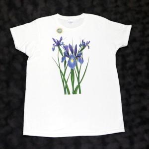 レディース Tシャツ リバティーグラフィックス アイリス シルクプリントTシャツ|ammax