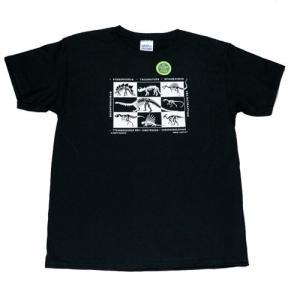 ユース Tシャツ リバティーグラフィックス ダイナソースケルトン シルクプリントTシャツ|ammax
