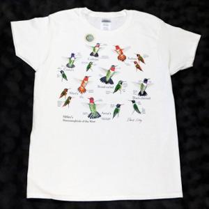 レディース Tシャツ リバティーグラフィックス ハミングバード シルクプリントTシャツ|ammax