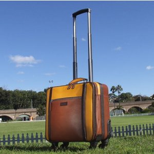 スーツケース  キャリーバッグ 旅行 機内持込 海外 革  レザー  ペニッシュミント ワールドワンEX 14011 |ammax