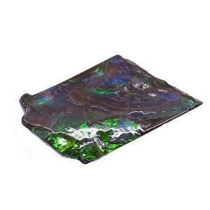 アンモライト かけら 欠片 標本にどうぞ パワーストーン お守り 天然石 化石 12u1|ammolite-museum