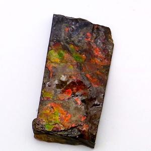 アンモライト かけら 欠片 S 標本にどうぞ パワーストーン お守り 天然石 化石 1518 ammolite-museum