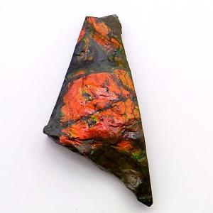 アンモライト かけら 欠片 標本にどうぞ パワーストーン お守り 天然石 化石 1524|ammolite-museum