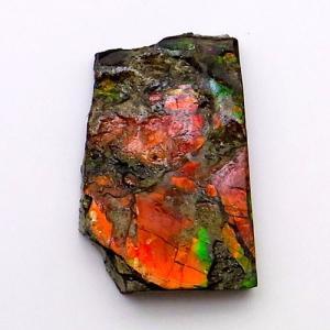 アンモライト かけら 欠片 S 標本にどうぞ パワーストーン お守り 天然石 化石 1527 ammolite-museum