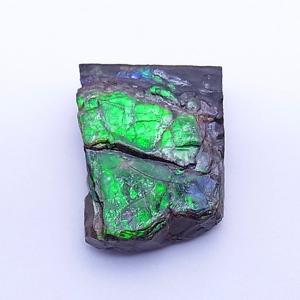 アンモライト かけら 欠片 S 標本にどうぞ パワーストーン お守り 天然石 化石 1537 ammolite-museum