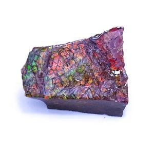 アンモライト かけら 欠片 S 標本にどうぞ パワーストーン お守り 天然石 化石 1615 ammolite-museum