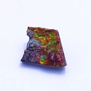 アンモライト かけら 欠片 S 標本にどうぞ パワーストーン お守り 天然石 化石 1617 ammolite-museum