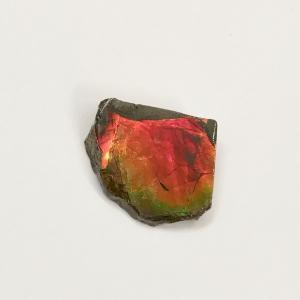 アンモライト かけら 欠片 S 標本にどうぞ パワーストーン お守り 天然石 化石 1807 ammolite-museum