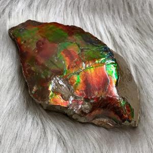 アンモライト かけら 欠片 L 標本にどうぞ パワーストーン お守り 天然石 化石 L1804|ammolite-museum
