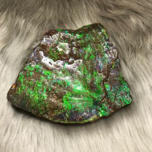 アンモライト かけら 欠片 L 標本にどうぞ パワーストーン お守り 天然石 化石 L1401|ammolite-museum