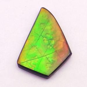 アンモライト ナチュラル ルース AAグレード nr021|ammolite-museum