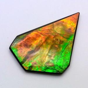 アンモライト ナチュラル ルース AAグレード nr035|ammolite-museum