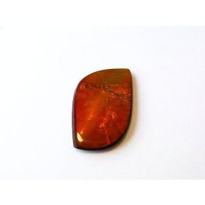 アンモライト ナチュラル ルース コレクターズグレード ダブルフェイス nrw013|ammolite-museum