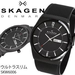 スカーゲン SKAGEN 腕時計 メンズ 時計 SKW6006|amonduul
