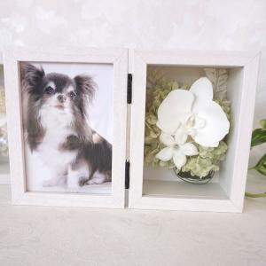 喪中見舞い 花  お供え 花 写真 白 胡蝶蘭 デンファレ  プリザーブドフラワー 写真立て フォトフレーム  ブリザードフラワー メモリアルフォトフレーム|ampoule-shop
