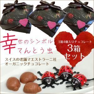 まとめ売りバレンタインギフト【送料無料】幸せを運ぶてんとう虫...