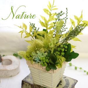 プリザーブドフラワー・プリザーブドグリーンのミニ、観葉植物アレンジ。男性の誕生日や新築祝いに人気のア...