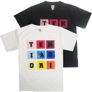 [日本サイズ]TENIGORI(テニゴリ) ユニセックス カラーブロックロゴTシャツ TGMT013(20y9mテニス)|amuse37