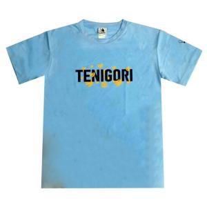 [日本サイズ]TENIGORI(テニゴリ) ユニセックス 袖プリント 半袖ロゴTシャツ TGMT011-サックス(20y8m)|amuse37