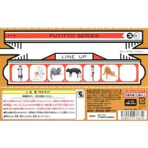 PUTITTO ネコ 6種セット|amyu-mustore