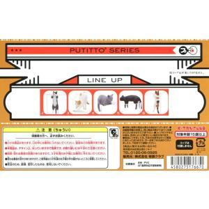PUTITTO ネコ 5種セット|amyu-mustore