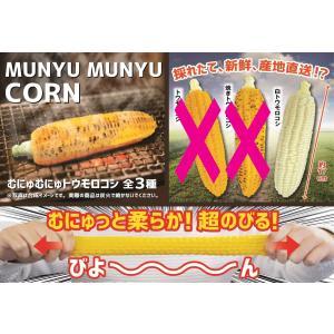 むにゅむにゅトウモロコシ 白トウモロコシ スクイーズ |amyu-mustore