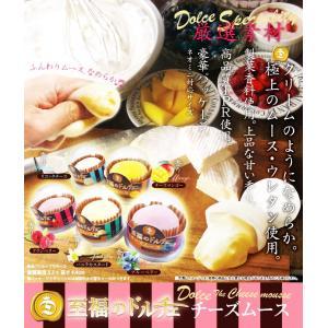 至福のドルチェ チーズムース スクイーズ サンプル 可愛い もっちり やわらか 全5種セット|amyu-mustore