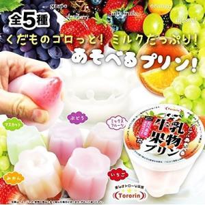 たべるな!牛乳果物プリン 全5種セット|amyu-mustore