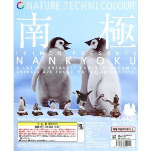 ネイチャーテクニカラー 南極 シークレット入り 全8種