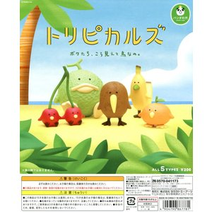 パンダの穴 トリピカルズ 全5種セット|amyu-mustore