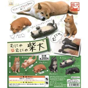 むにゃむにゃ 柴犬 全6種セット|amyu-mustore