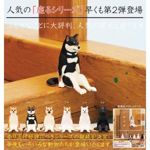座る犬 全6種セット|amyu-mustore
