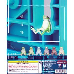 座る蛙 全6種セット|amyu-mustore
